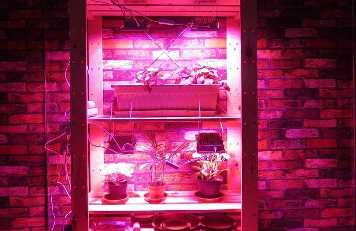 Lower Humidity in Grow Tent
