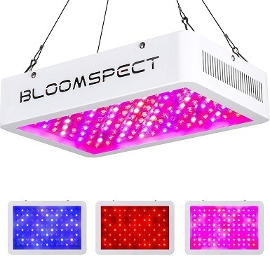 BLOOMSPECT